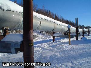 オーロラを求めて! 冬のアラスカ4日間 チェナ温泉滞在コース