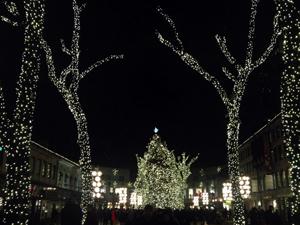 レキシントン ボストン クリスマスイルミネーション