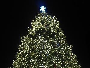 ボストン クリスマス Boston